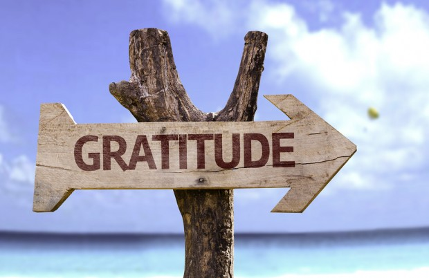 Magnitude of Gratitude